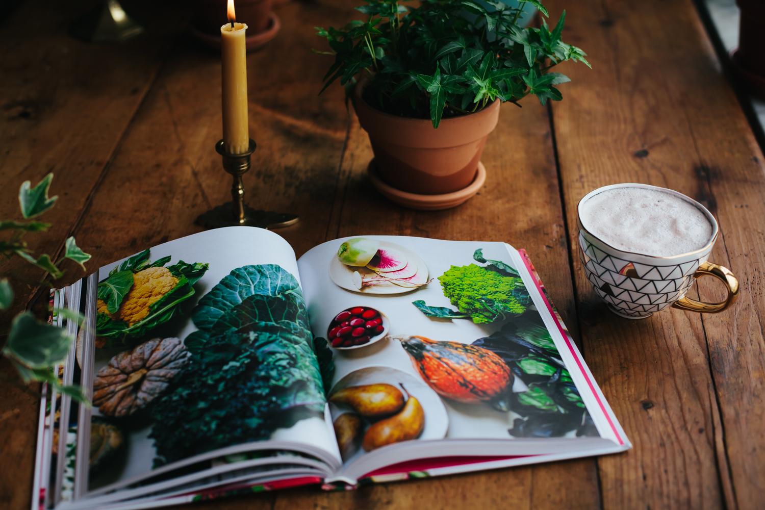 Just Alive, a new cooking book by Anya Kassoff and Masha Davydova