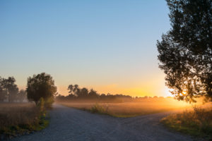 A crossroads in a rural area gently lit by a sunrise