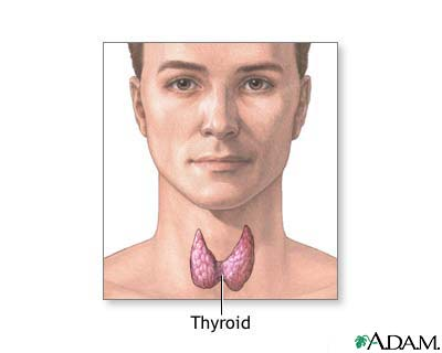 Natural Thyroid Storm Therapies