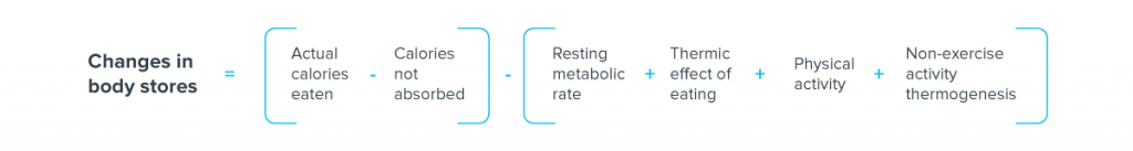 the changes in body stores equals the actual calories consumed minus the calories not absorbed minus the metabolic rate of rest plus the thermal effects of consumption plus physical activity plus non-exercise thermogenesis