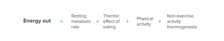 energy equation equals metabolic rate of rest plus thermal effect of food plus physical activity plus non-exercise thermogenesis