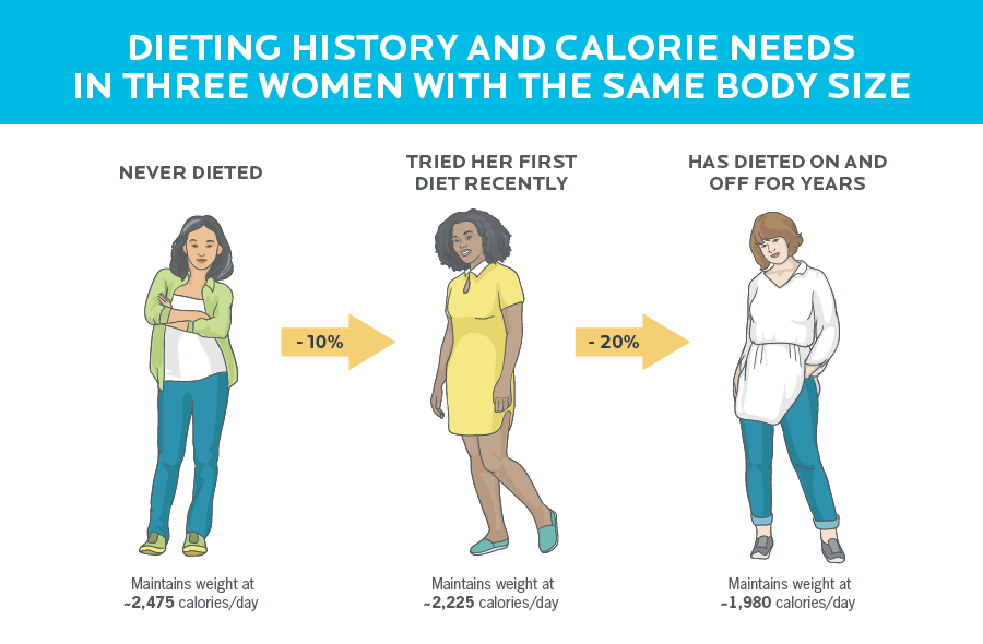 Infographic showing how diet history affects calorie needs in three women of the same body size. Never diet requires about 2,475 calories to maintain weight, for the first time you need a diet of 2.225 calories to maintain weight, and frequent dieting requires 1,980 calories to maintain weight.