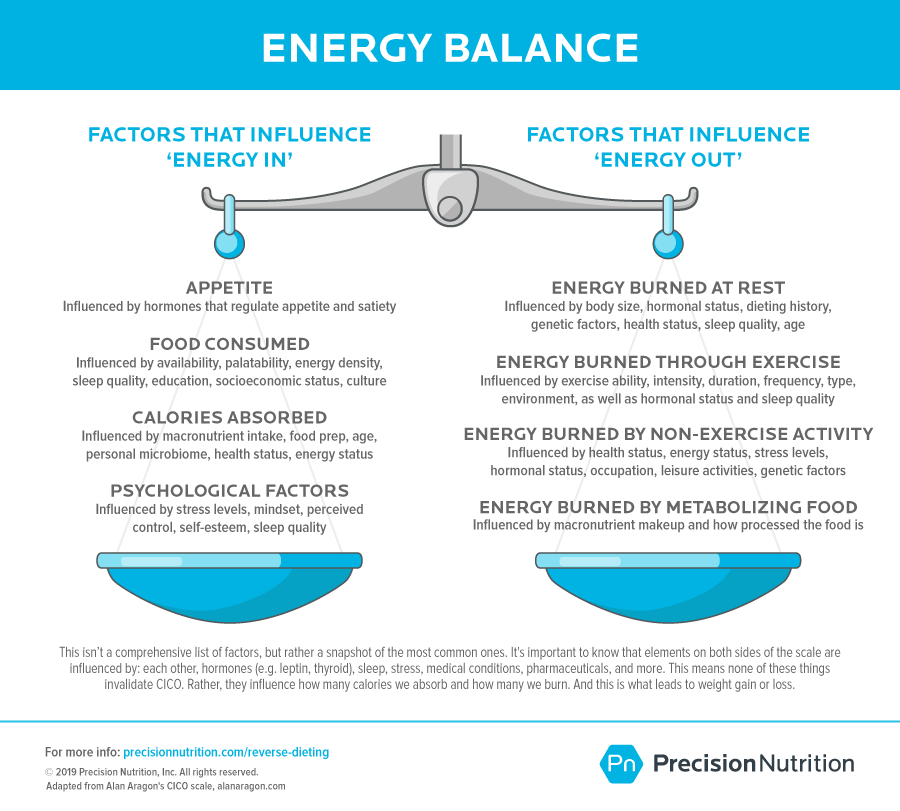 Energy Balance Scale with factors affecting energy on the left side and factors affecting energy on the right.